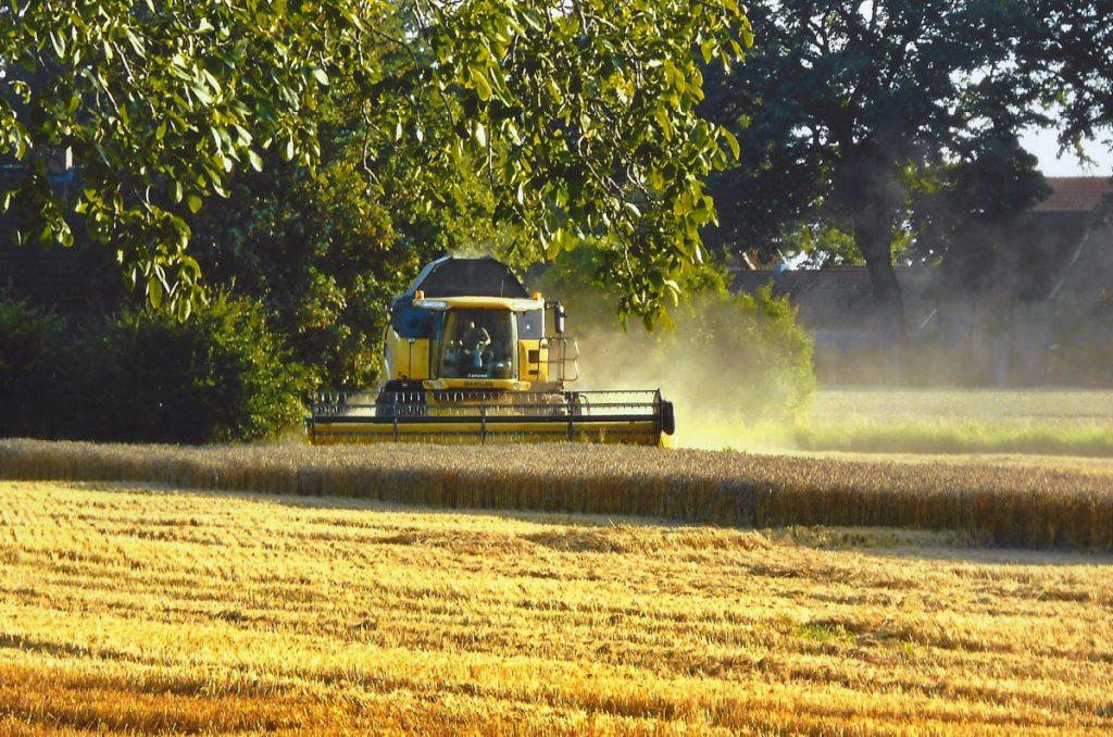 Hof Sudhaus Middendorf - Landwirtschaft - Bild 02