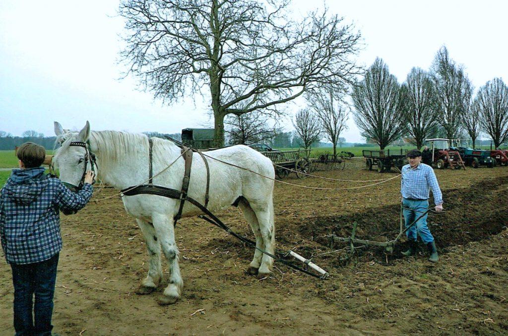 Hof Sudhaus Middendorf - Landwirtschaft früher und heute - Bild 02