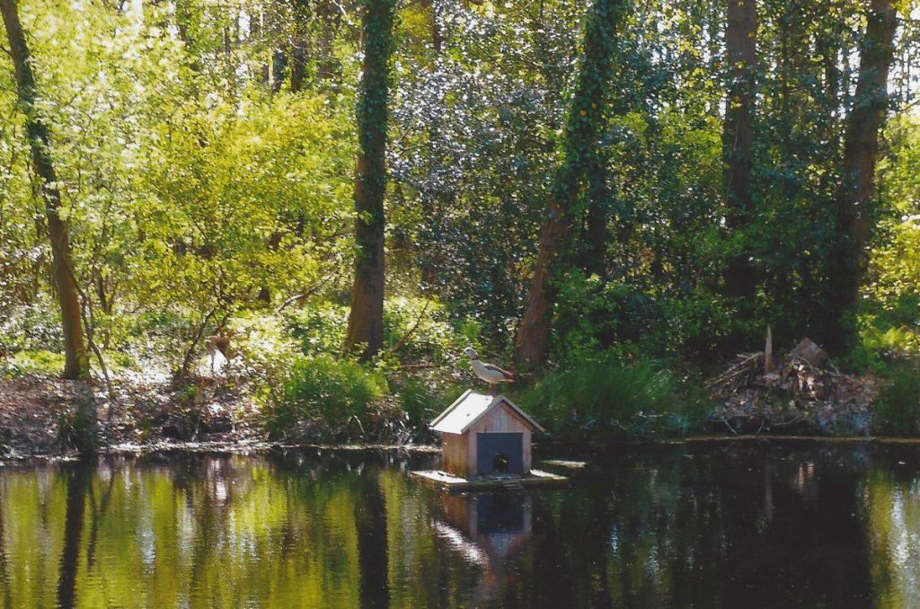 Hof Sudhaus Middendorf - Garten - Bild 04